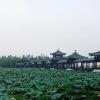Yuxiaoyi*的空间